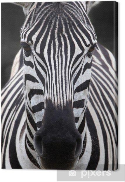 Canvas Zebra hoofd - Thema's