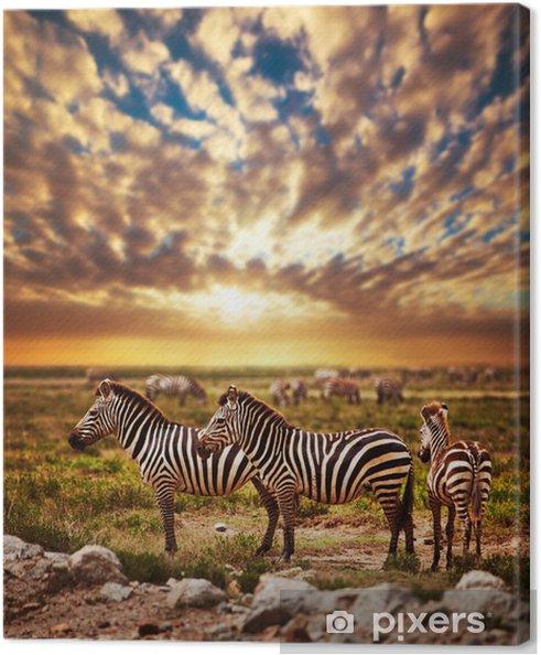 Canvas Zebra kudde op de Afrikaanse savanne bij zonsondergang. Safari in Serengeti - Stijlen