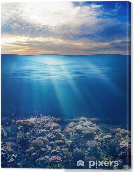 Canvas Zee of oceaan onderwater leven met zonsondergang hemel - Thema's