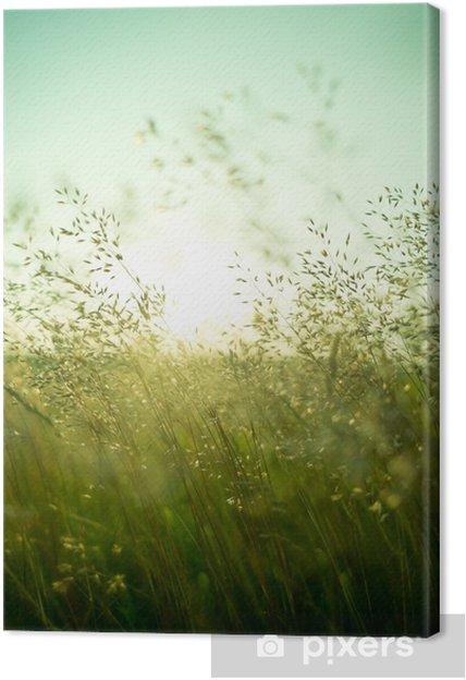 Canvas Zomer Droog Gras -