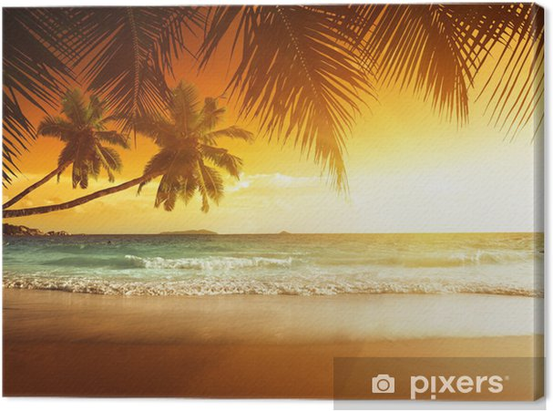 Canvas Zonsondergang op het strand van de Caribische zee - Thema's