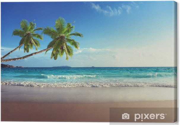 Canvas Zonsondergang op het strand van de Seychellen - Palmbomen
