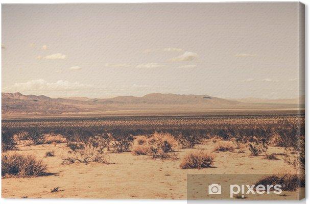 Canvas Zuidelijke woestijn van Californië - Woestijn