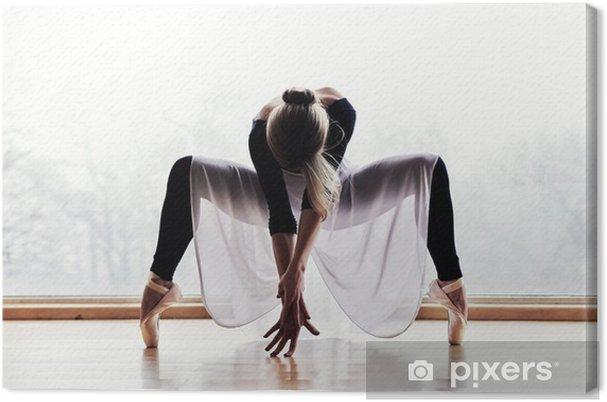 Canvastavla Balettdansös - Teman