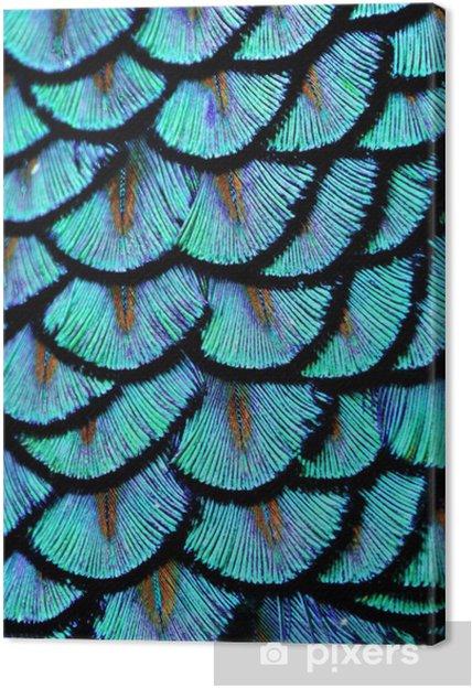 Canvastavla Blå fjädrar - Djur