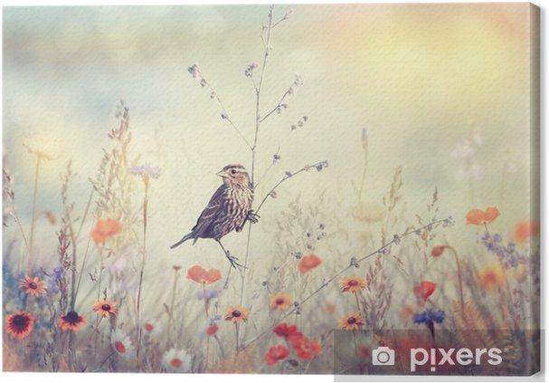 Canvastavla Fält med vilda blommor och en fågel - Växter & blommor