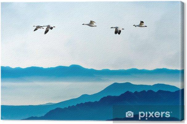 Canvastavla Gäss som flyger mot blå himmel bakgrund - Djur
