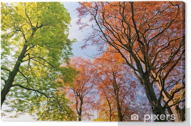 Canvastavla Grenar och trädstammar på våren. - Årstider