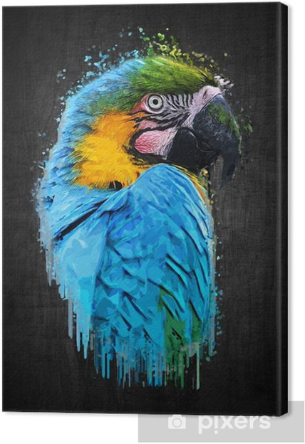 Canvastavla Papegoja fågel (Svår ara). måla effekt - Djur