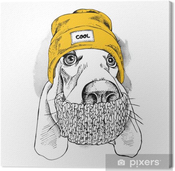 Canvastavla Porträtt av bassethundhund i hipsterhatt och med halsduk   vektor illustration