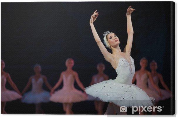 pålitlig kvalitet eleganta skor storlek 7 Canvastavla Prima ballerina vit svan • Pixers® - Vi lever för ...