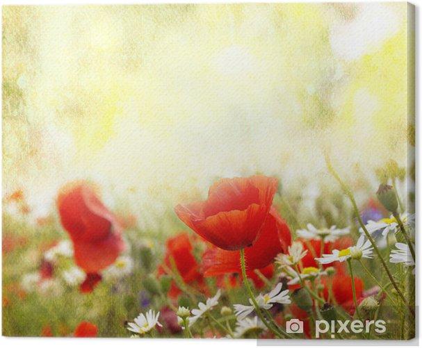 Canvastavla Vallmo blommor - Teman
