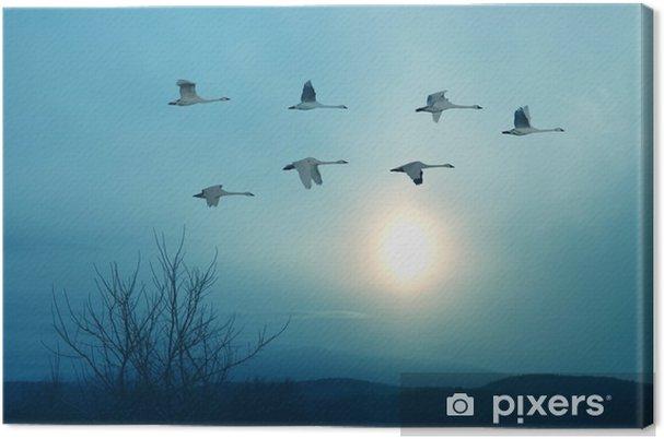 Canvastavla Våren eller hösten migration av kranar - Landskap