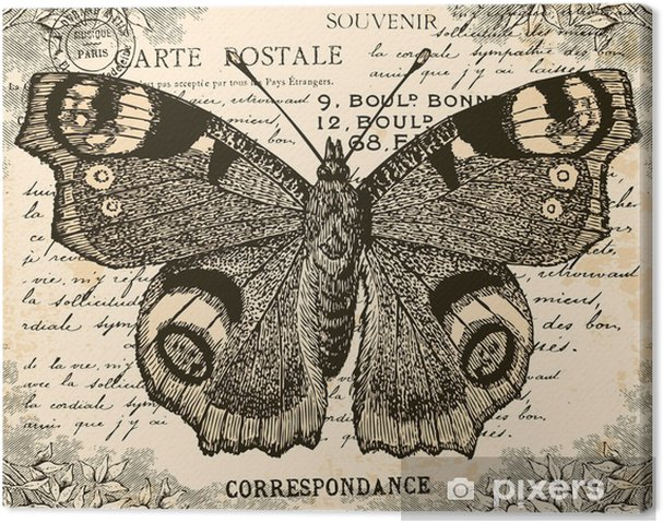 Canvastavla Vintage Fjäril - Stilar