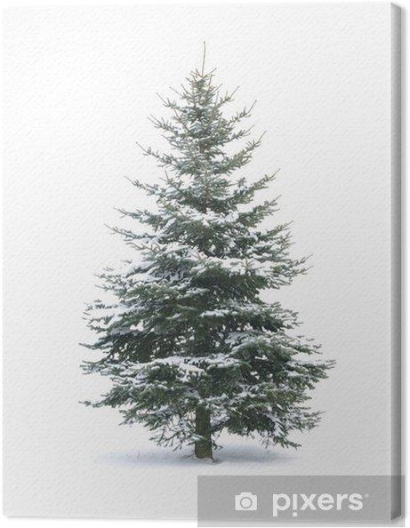 Cuadro en Lienzo Arbol de navidad - Celebraciones internacionales