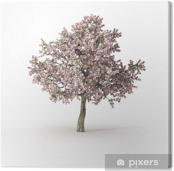 Cuadro en Lienzo Árbol floreciente en blanco - Estaciones
