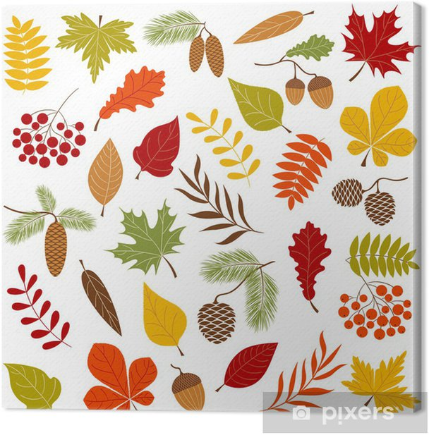 Cuadro en Lienzo Autumn forest - Temas