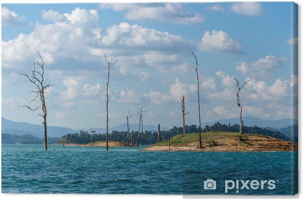 Cuadro en Lienzo Aventura en Khao Sok, Parque Nacional, árbol muerto Postal. exo Asia - Agua