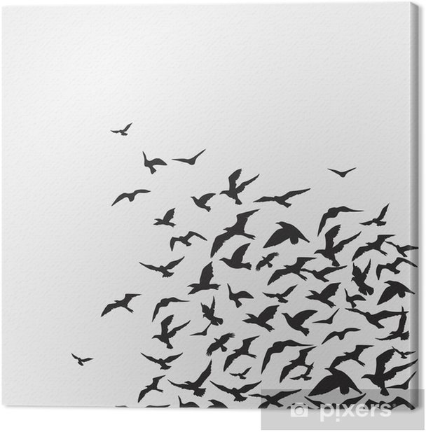 Cuadro en Lienzo Aves - Temas