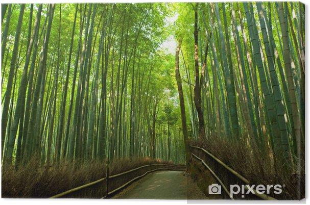 Cuadro en Lienzo Bamboo grove - Estilos