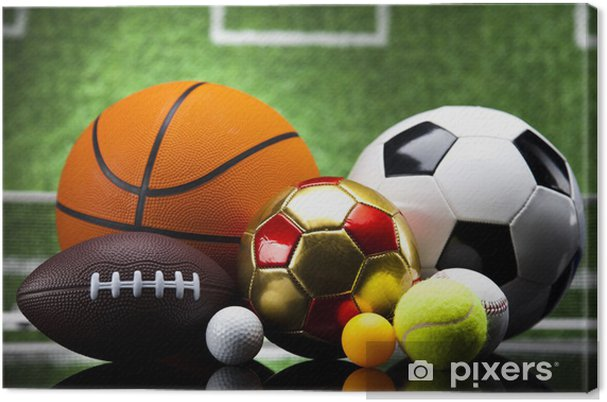 Cuadro en Lienzo Bolas del deporte - Baloncesto