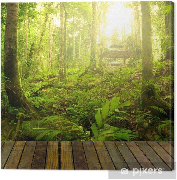 Cuadro en Lienzo Bosque con rayos de luces y bosques tablón, adecuado para prod - Temas