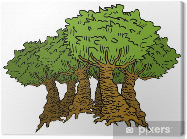 Cuadro en Lienzo Bosque - Árboles