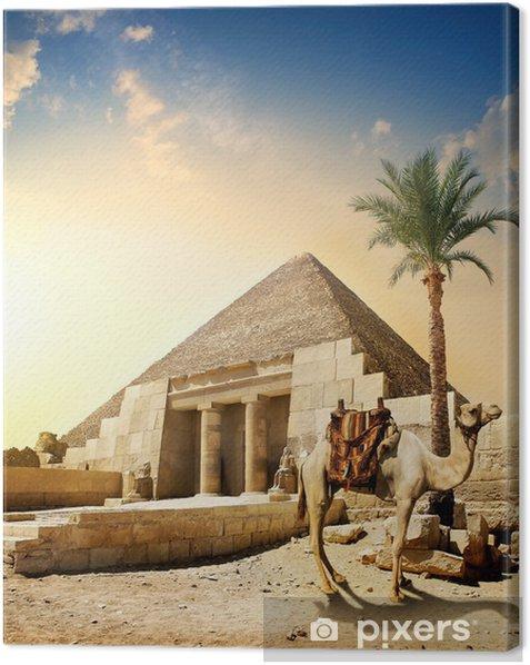 Cuadro en Lienzo Camello cerca de la pirámide - Monumentos