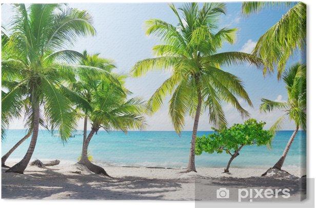 Cuadro en Lienzo Catalina isla en la República Dominicana - Temas
