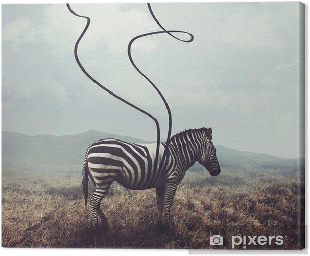 Cuadro en Lienzo Cebra y rayas - Animales