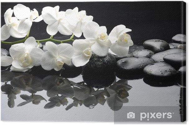 Cuadro en Lienzo Cerca orquídea blanca con gotas de agua de piedra - Estilos