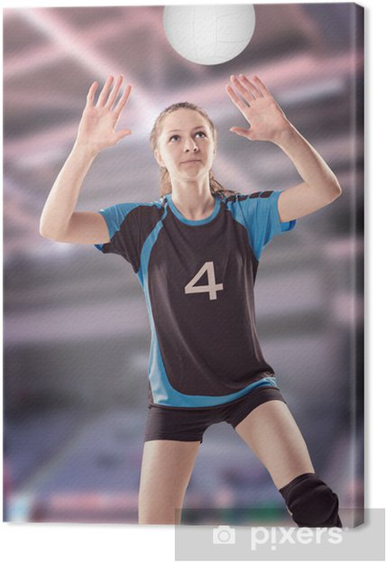 Cuadro en Lienzo Chica del voleibol - Temas