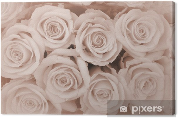 Cuadro en Lienzo Condolencia fondo rosas ... - Temas