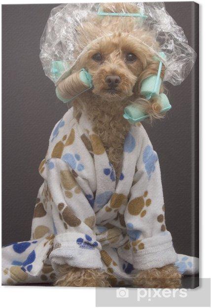 Cuadro en Lienzo Cuarto de baño del perro • Pixers® - Vivimos para ...
