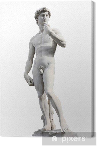 Cuadro en Lienzo David de Miguel Ángel - Monumentos