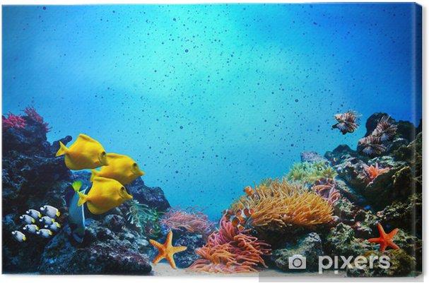 Cuadro en Lienzo Escena subacuática. Los arrecifes de coral, grupos de peces en el agua clara del océano - Arrecife de coral