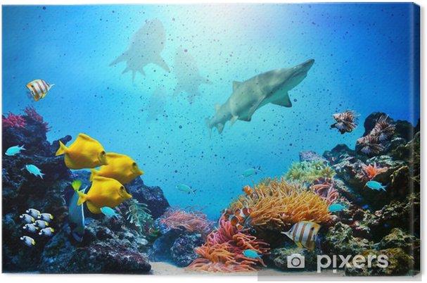 Cuadro en Lienzo Escena subacuática. Los arrecifes de coral, grupos de peces, los tiburones - Tiburónes
