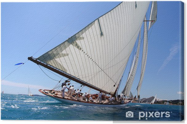 Cuadro en Lienzo Espíritu de equipo team spirit velero, mar, océano vela regata - Barcos