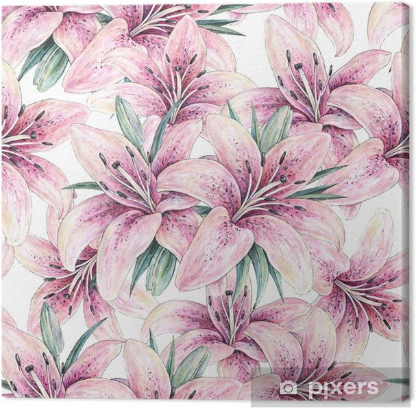 Cuadro En Lienzo Flores De Lirio Rosa Aisladas Sobre Fondo Blanco
