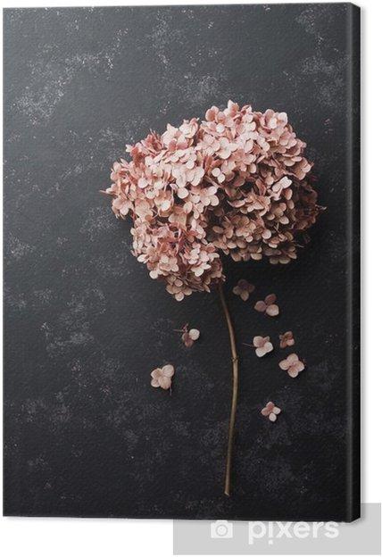 Cuadro en Lienzo Flores secadas del hydrangea en vista de negro superior de la mesa de la vendimia. estilo aplanada. - Plantas y flores