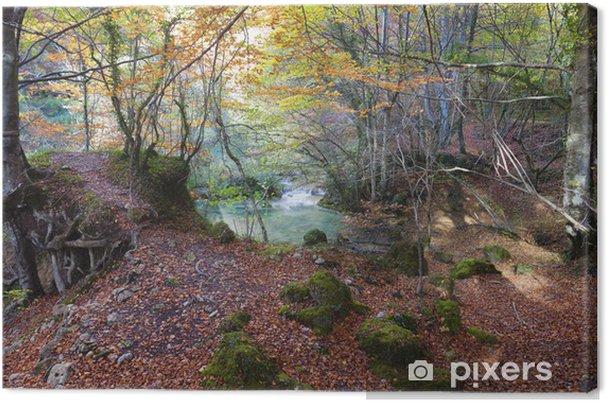 Cuadro en Lienzo Forestal y lake.Navarra verde, España. - Deportes de exterior