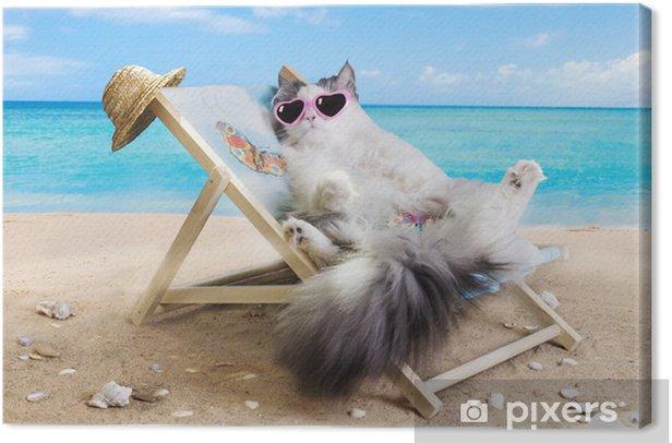 Cuadro en Lienzo Gato descansando en una tumbona -