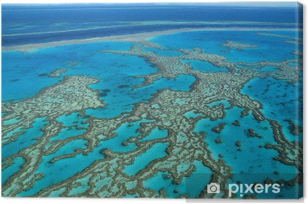 Cuadro en Lienzo Gran Barrera de Coral, Australia - Arrecife de coral