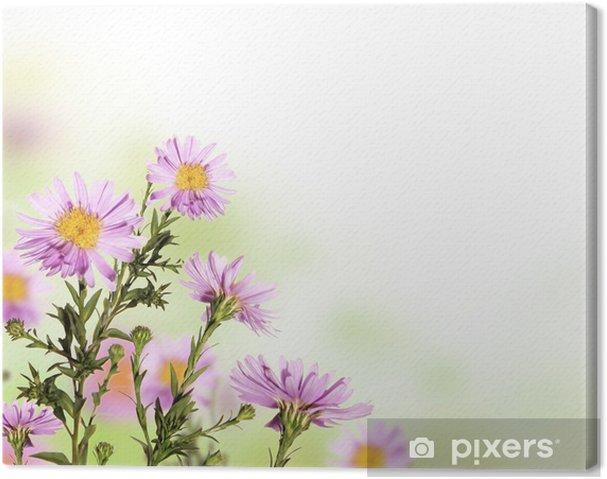 Cuadro en Lienzo Hermosa flor de fondo con espacio libre para el texto - Flores