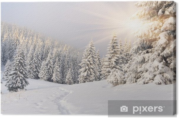 Cuadro en Lienzo Hermoso paisaje de invierno en las montañas. Salida del sol -