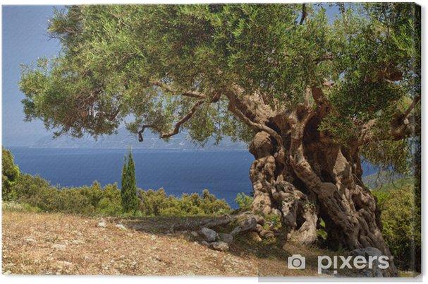 Cuadro en Lienzo Islas Griegas - Temas