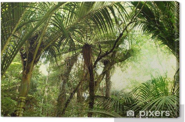 Cuadro en Lienzo Jungle tropical - Temas