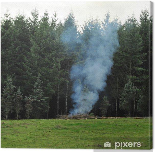 Cuadro en Lienzo La quema de bosques - Otros