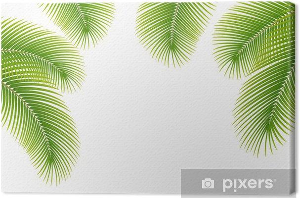 Cuadro en Lienzo Las hojas de palmera sobre fondo blanco. • Pixers ...