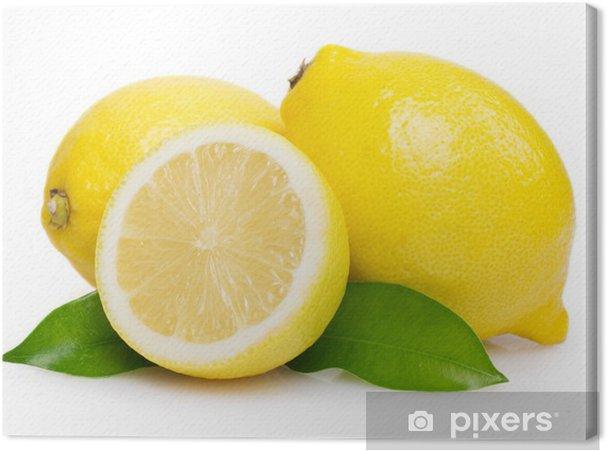 Cuadro en Lienzo Limón fresco con hojas - Frutas